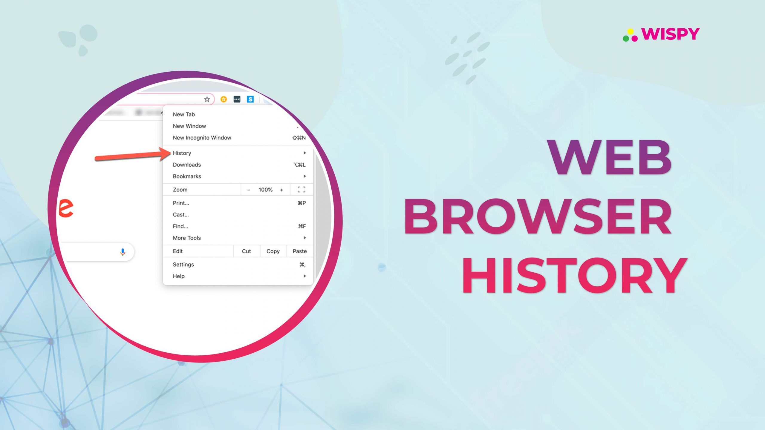 How to Access Someone's Browsing History Remotely? - TheWiSpy Guide